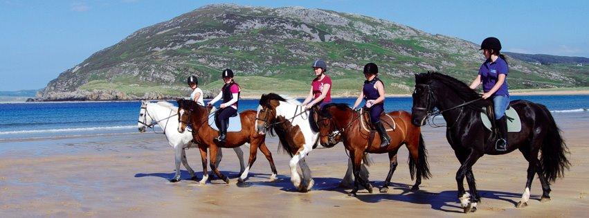 Tullagh Bay Equestrian