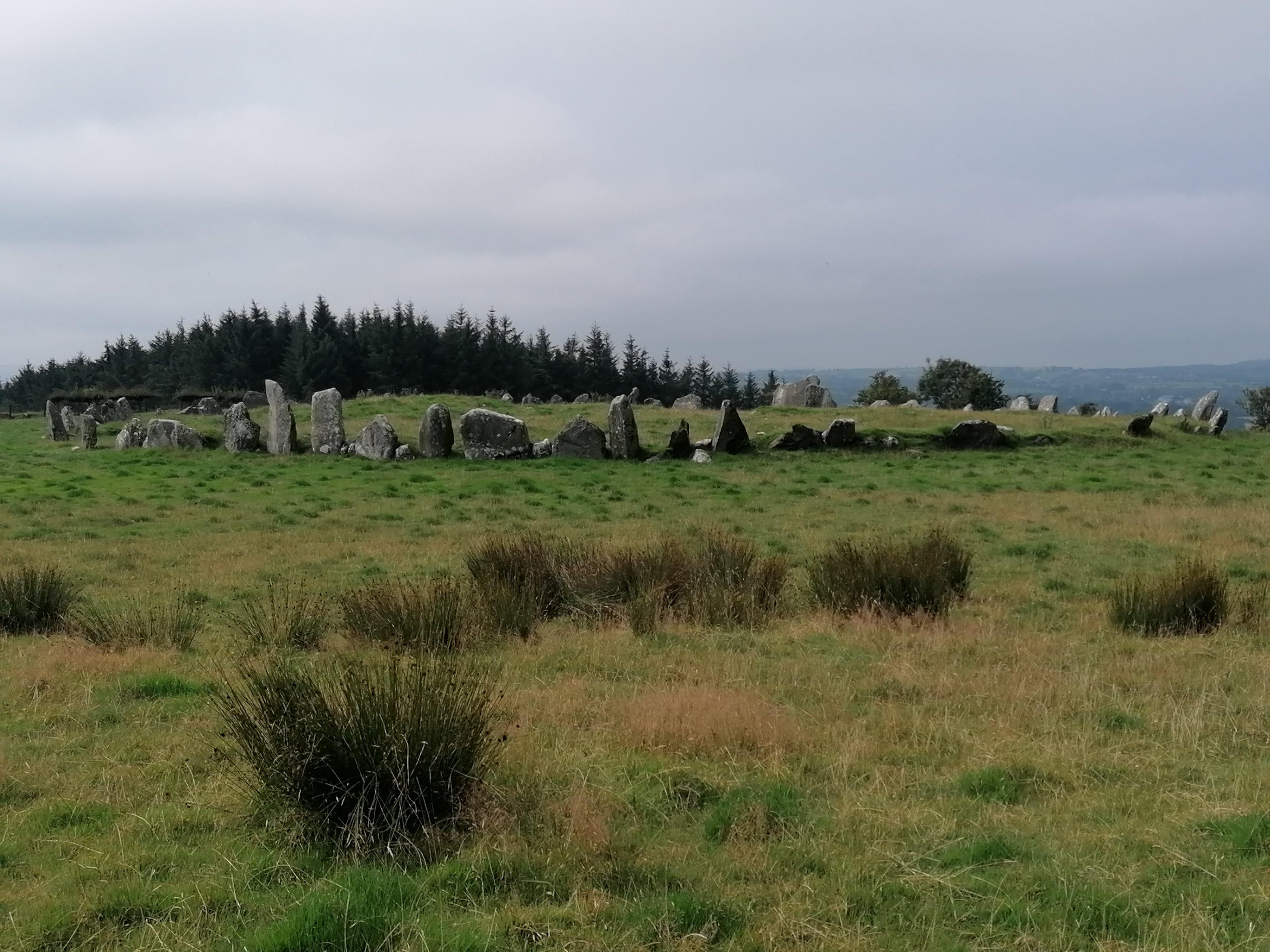 Beltany Stone Circle