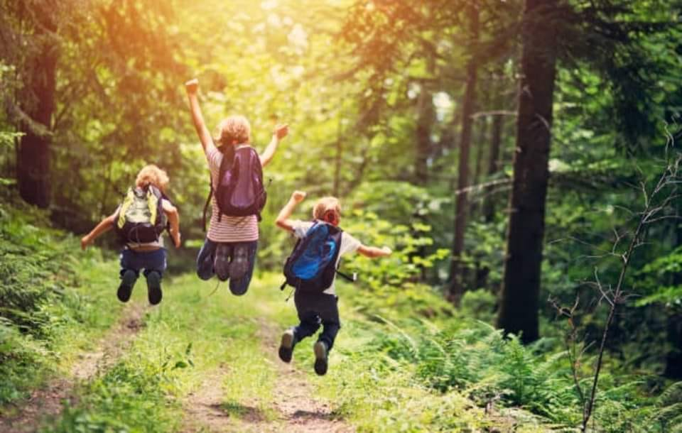 Wilder Child Summer Camp